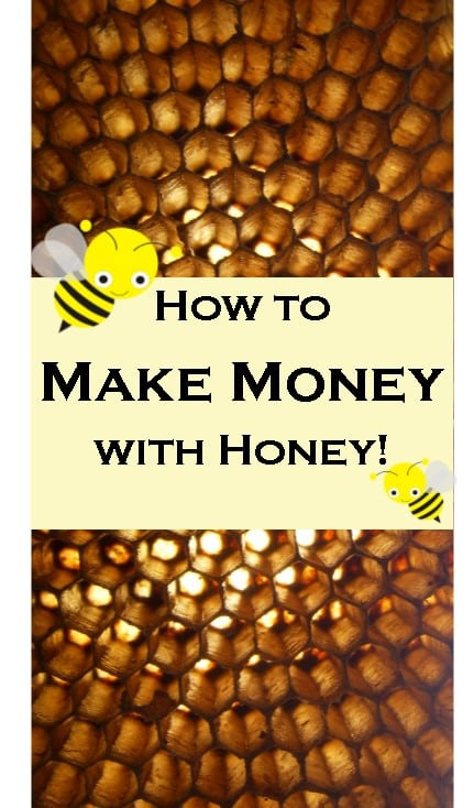 How to make money with Honey, Google Chrome extension honey, save money with honey!