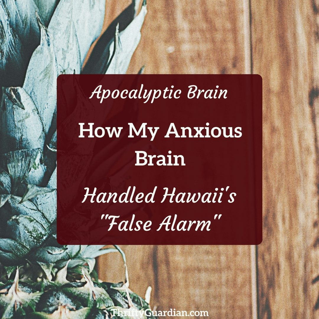 anxious mom hawaii alarm