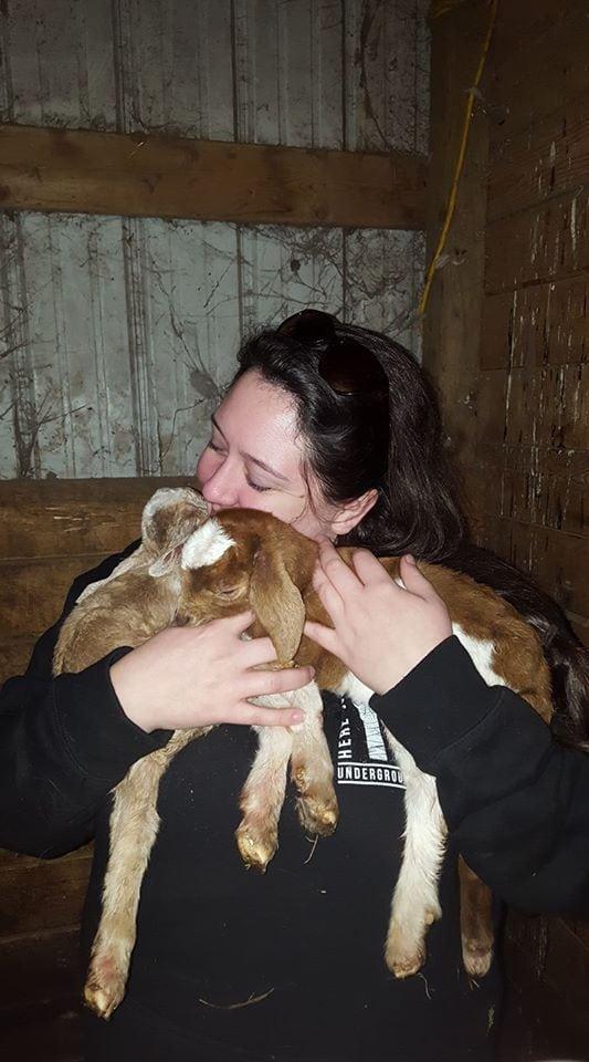 brunette girl hugging goats happily