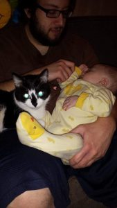 bearded man holding a baby in a yellow onesie while black and white cat sits on his lap