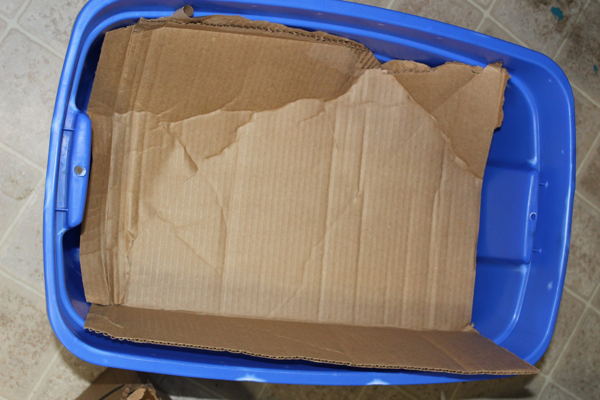 blue tote with cardboard covering center