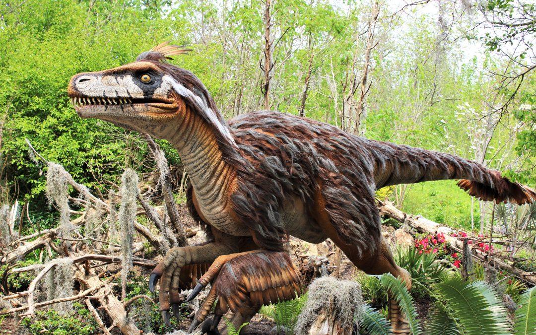 St. Louis Zoo Dinosaur Exhibit