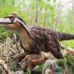 Animatronic utah raptor st louis zoo