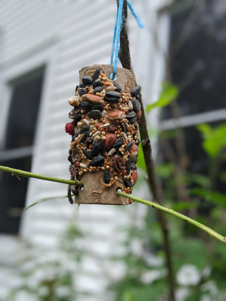 Toilet paper tube covered in peanut butter and bird seed, hanging from string in a yard.